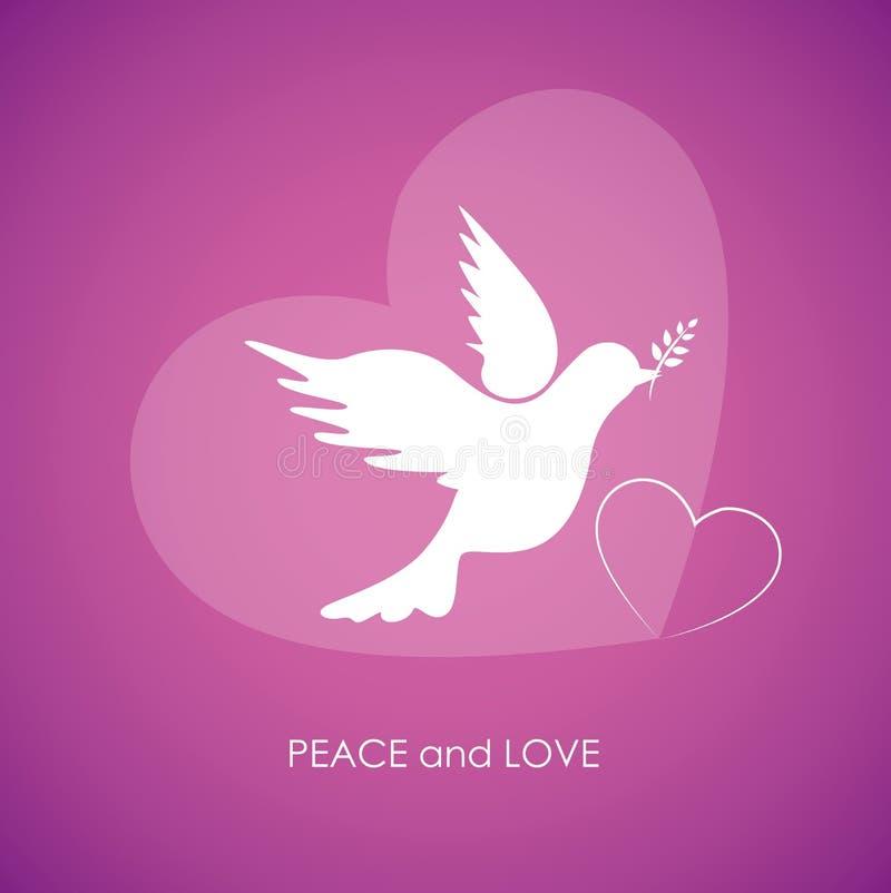 在桃红色背景的和平和爱白色鸠 向量例证