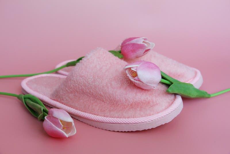 在桃红色背景的桃红色拖鞋 附近桃红色花 免版税库存照片