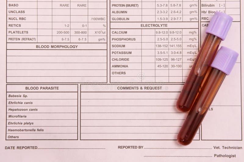 在桃红色背景的验血管 免版税库存照片