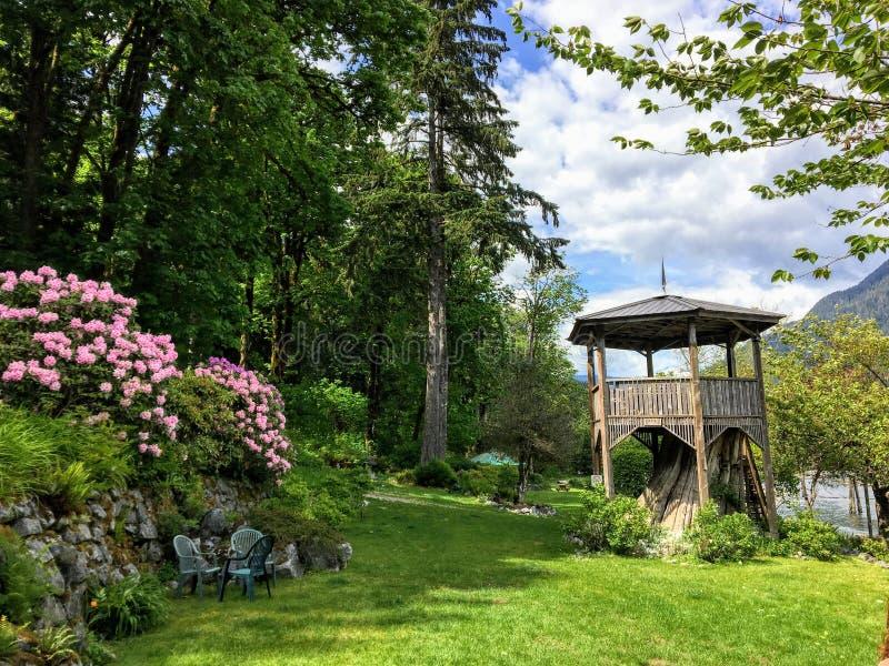 在桃红色花和高常青树围拢的树桩顶部的一座美丽的木塔在一个遥远的树木丛生的区域 图库摄影
