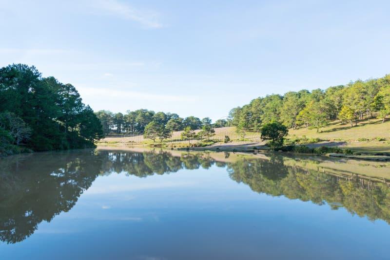 在桃红色草甸和露水的美好的阳光在日出第6部分的草 库存照片