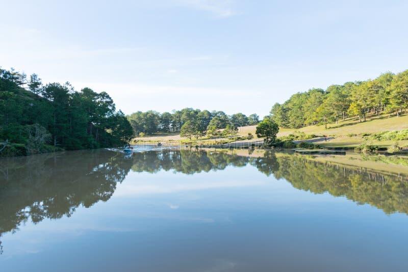 在桃红色草甸和露水的美好的阳光在日出第5部分的草 免版税库存照片