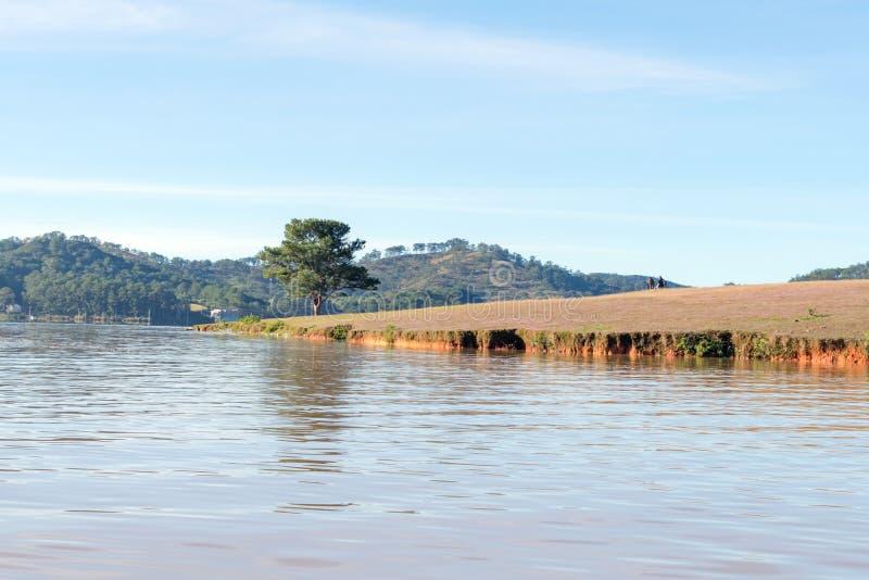 在桃红色草甸和露水的美好的阳光在日出第2部分的草 免版税库存图片