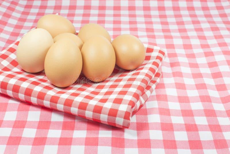 在桃红色颜色格子花呢披肩和红颜色格子花呢披肩的鸡蛋 图库摄影