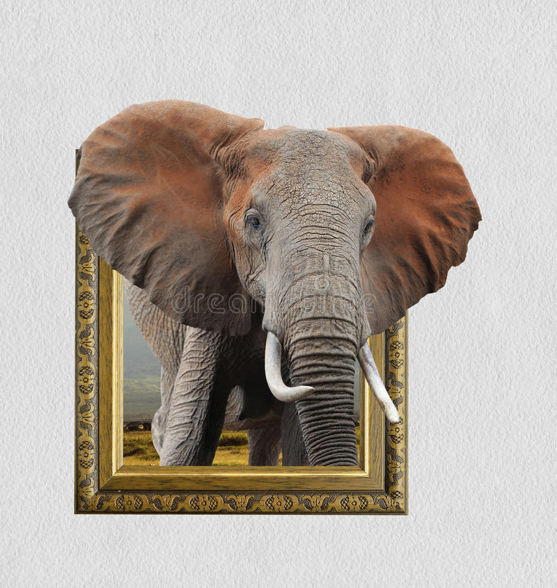 在框架的大象与3d作用 免版税库存照片
