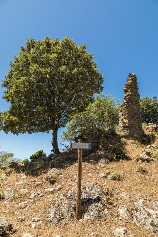 在案件诺韦被放弃的村庄的流浪汉废墟在可西嘉岛 图库摄影