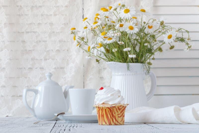 在桌上的新鲜的春白菊在内部的白色投手 库存图片