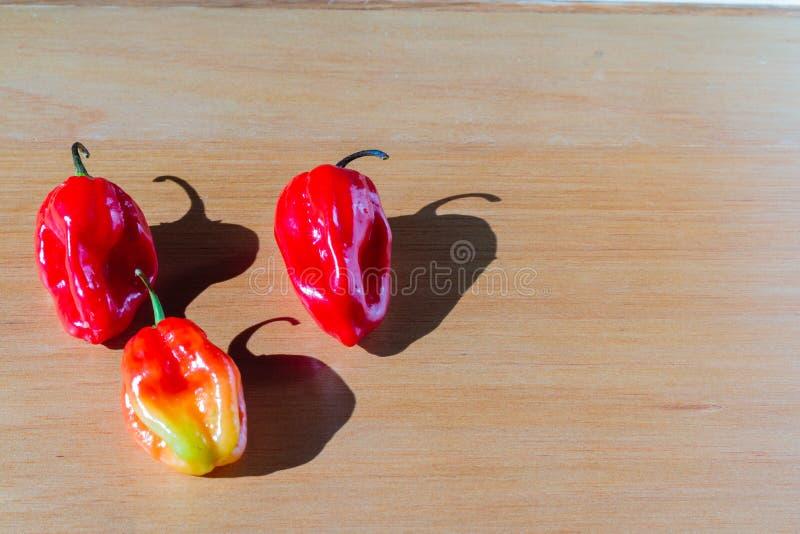 在桌上的新鲜的红色西红柿 库存图片