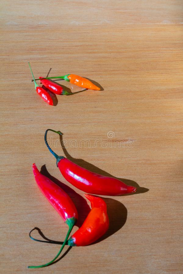 在桌上的新鲜的红色西红柿 免版税库存照片