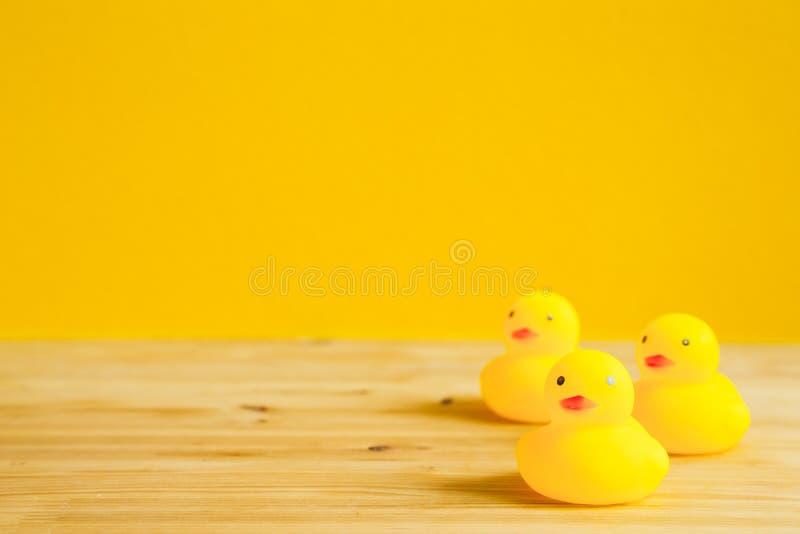 在桌上的黄色橡胶鸭子玩偶 免版税库存图片