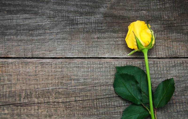 在桌上的黄色玫瑰 免版税库存图片