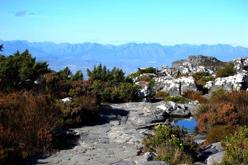 在桌山,南非,开普敦顶部的看法 免版税库存照片