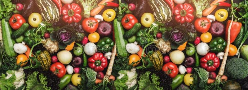 在桌的不同的五颜六色的新鲜蔬菜在充分的框架 健康食物和与许多维生素 顶视图 库存照片