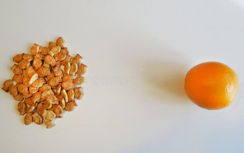 在桔子对面的薄脆饼干在白色背景 图库摄影