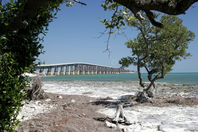 在桥梁佛罗里达关键字间 免版税库存图片