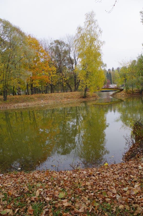 在桥梁池塘间 免版税库存照片