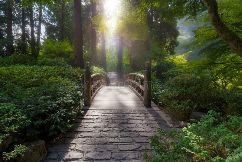 在桥梁的早晨光 免版税图库摄影