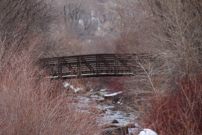 在桥梁附近 库存图片