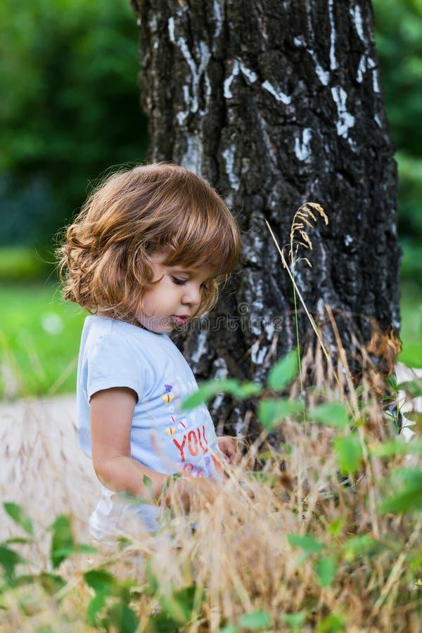 在桦树附近的逗人喜爱的小女孩 库存图片