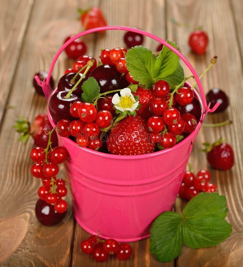 在桶的各种各样的莓果 库存照片