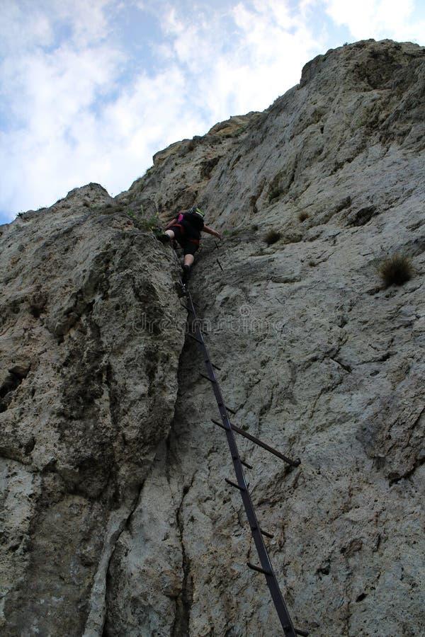 在梯子上的登山人在Pittentaler Klettersteig 库存图片