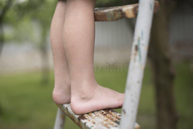 在梯子的儿童` s赤脚 特写镜头 户外 库存图片