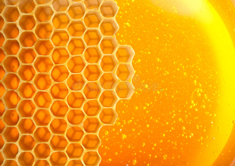 在梳子的蜂蜜 免版税库存照片