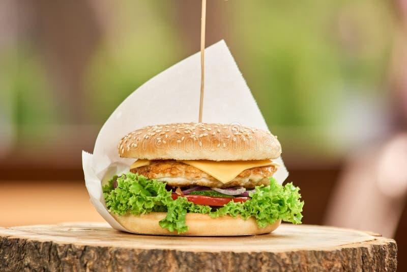 在棍子的完善的大小汉堡包 库存照片