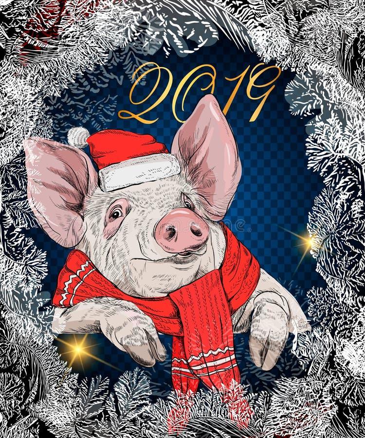 在棕榈叶的传染媒介逗人喜爱的猪 在玻璃的猪与一个鸡尾酒在他的手上 新年标志2019年 卡片设计的,加州模板 皇族释放例证