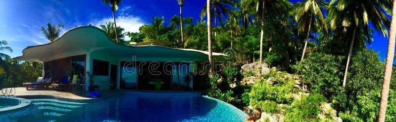 在棕榈树中的水池别墅 免版税库存照片