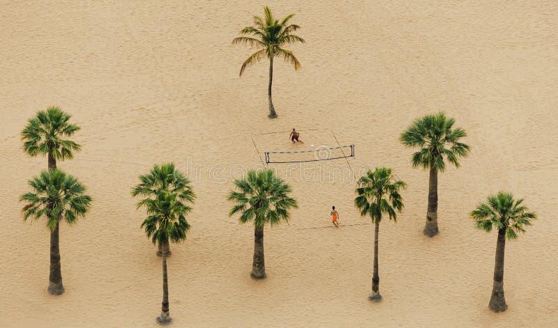 在棕榈树之间的排球使用在Teresitas海滩在两个男孩的看法上 免版税库存图片
