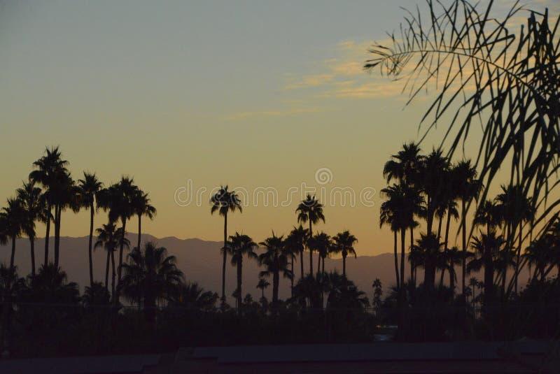 在棕榈泉的沙漠日出 免版税库存图片
