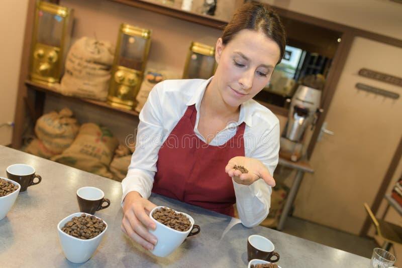 在棕榈的咖啡豆 库存图片