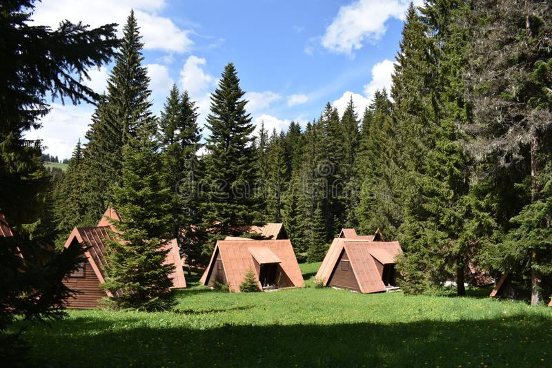 在森林中间的平房 库存图片