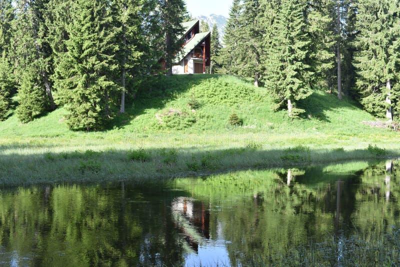 在森林中间的现代山样式房子 免版税库存照片