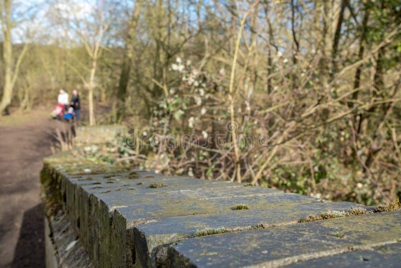 在森林人行桥看的砖砌详细的看法 背景显示在焦点,走通过清楚的年轻夫妇外面 免版税库存照片