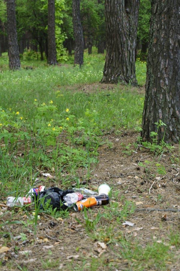在森林人非法地被投掷的垃圾的垃圾到人和自然里的森林概念 非法垃圾堆本质上 ? 库存照片