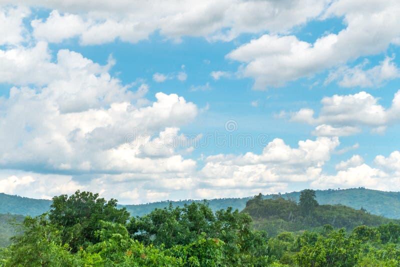 在森林使看法下雨环境美化和蓝天和云彩与 图库摄影
