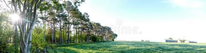在森林全景旁边的乡下农场 免版税库存图片