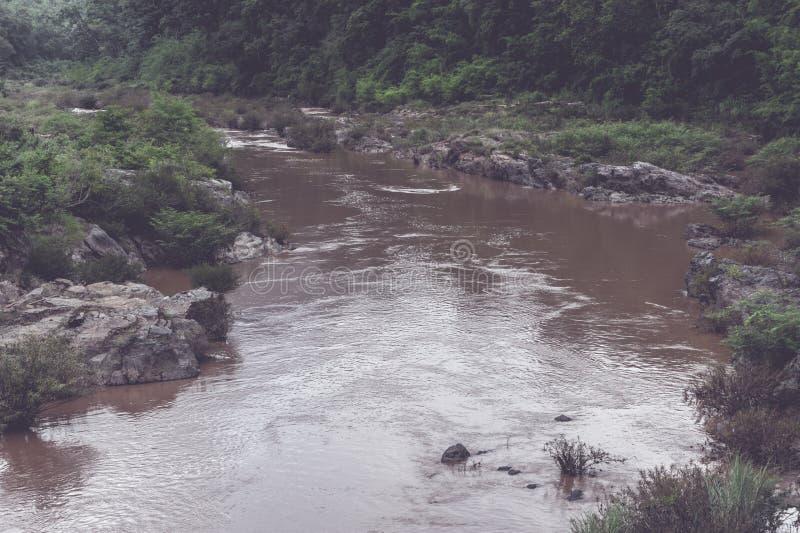 暴洪在森林公园,北部泰国 库存照片