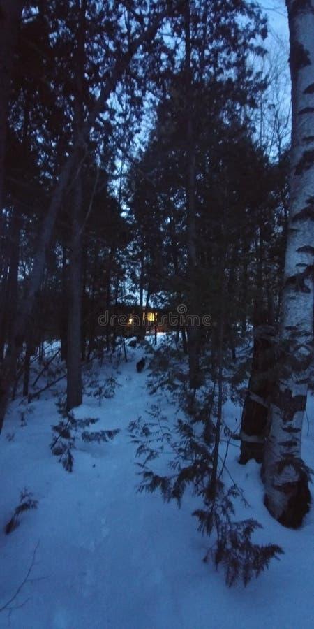 在森林冬天雪的客舱 免版税库存图片