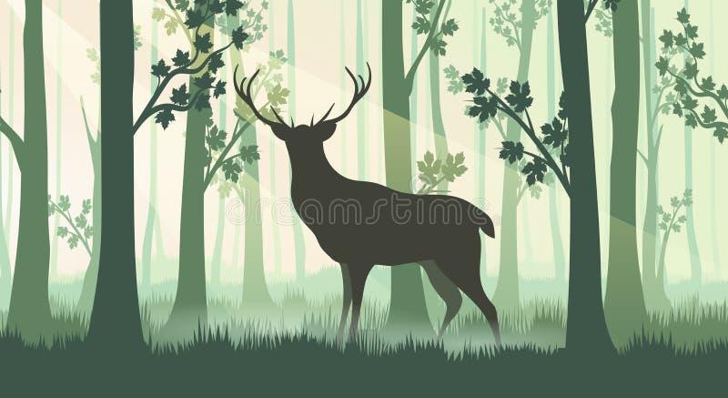 在森林剪影的鹿 皇族释放例证