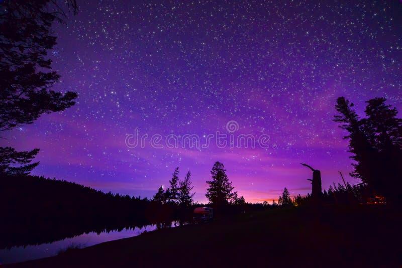 在森林和湖的紫色Stary夜空 库存图片