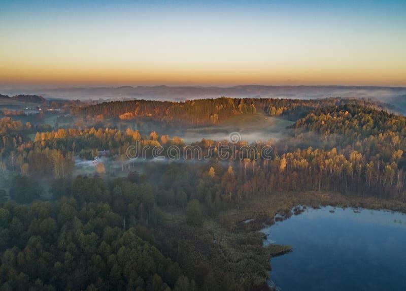 在森林和湖-寄生虫视图的日出 库存图片