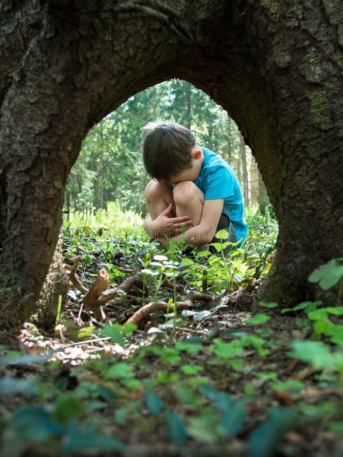 在森林失去的小男孩 免版税库存图片