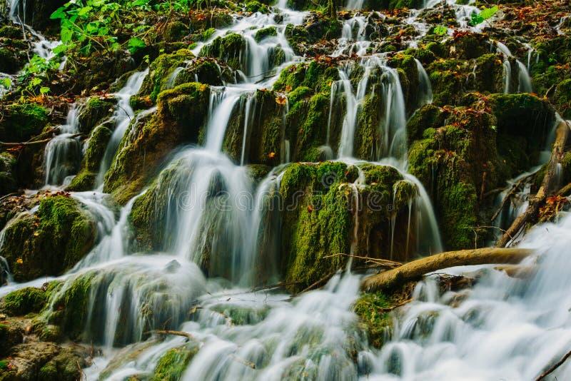 在森林掩藏的美丽的瀑布,在Plitvice 免版税库存图片
