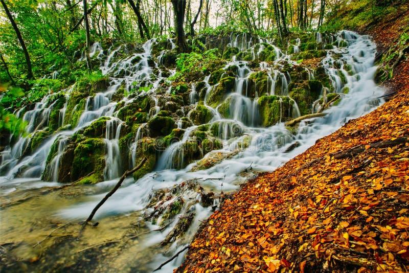 在森林掩藏的美丽的瀑布,在Plitvice 免版税库存照片