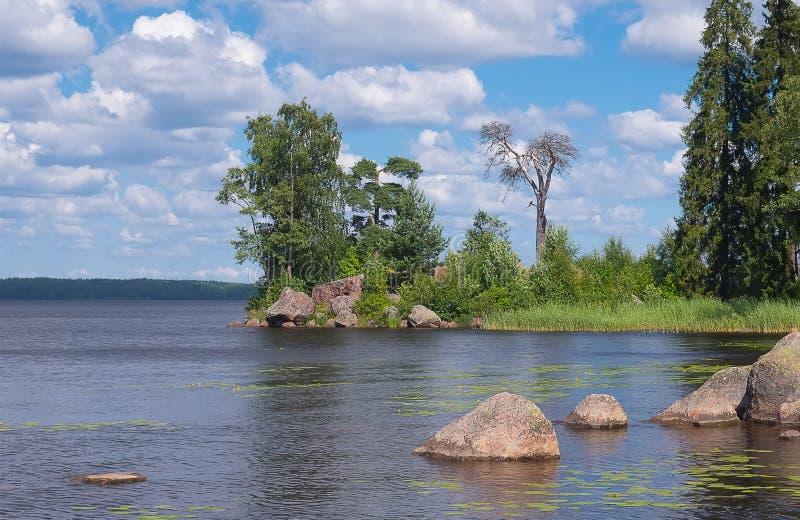 在森林湖的小小海湾 库存照片
