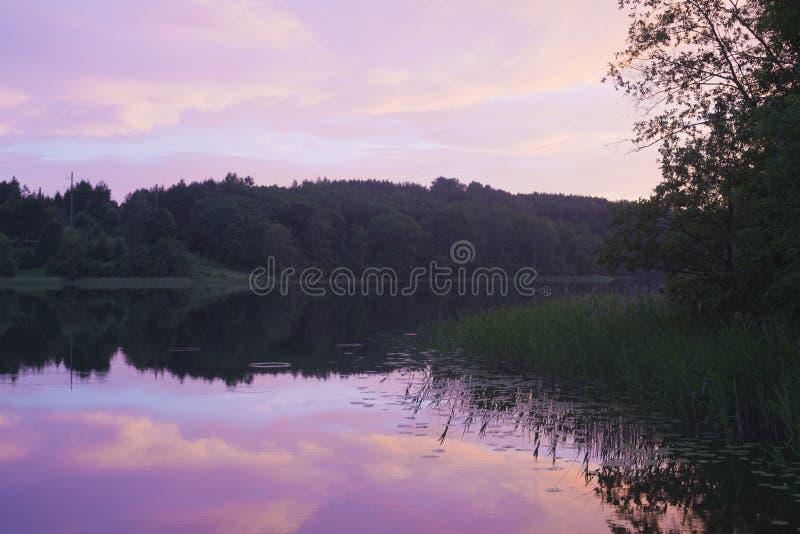 在森林湖的晚上盛夏 库存图片