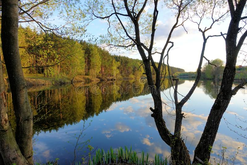 在森林湖的美好的日落 云彩在水中反射了 免版税库存图片